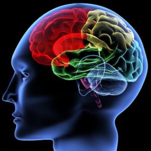 aprendizaje-cognitivo