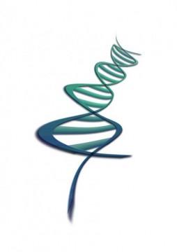 codigo_genetico