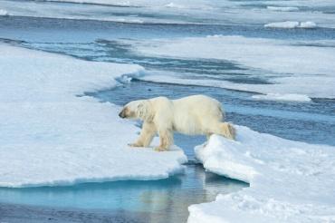 agua-calentamiento-mundial