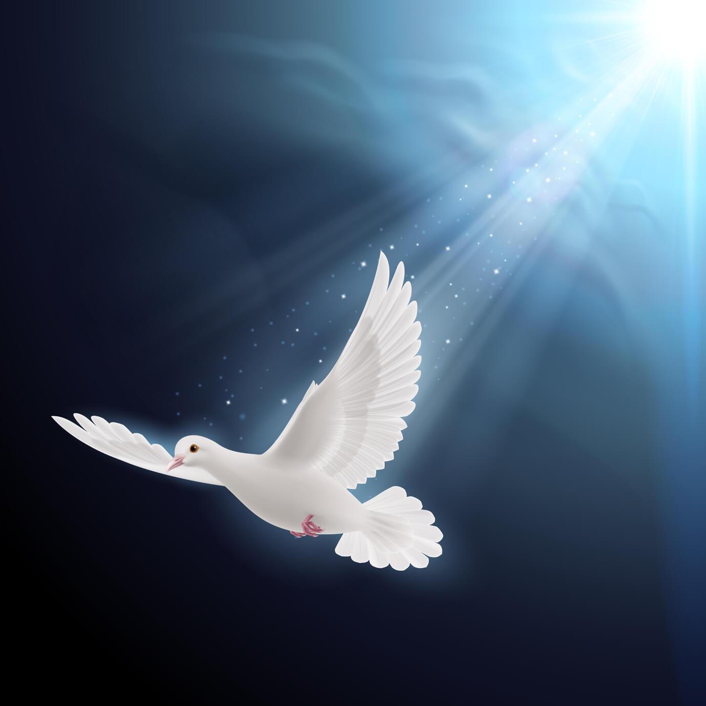 Importancia De La Fe Y Esperanza