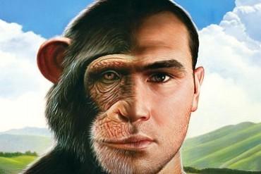 Humans Monkeys Used in DieselFumes Tests Funded by